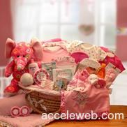 Girl toddler basket